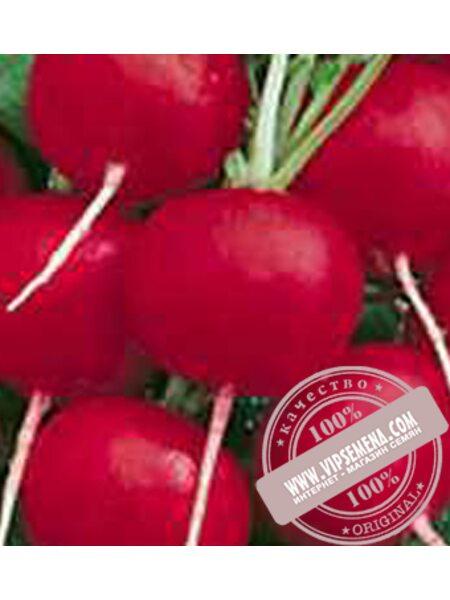 Лада (Lada) семена редиса Moravoseed, оригинальная упаковка (250 грамм)