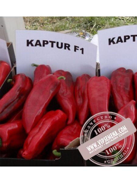 Каптур F1 (Кaptur F1) семена перца сладкого Seminis, оригинальная упаковка (500 семян)