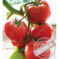 Malinka Star F1 (Малинка Стар f1)  семена томата индет. розового Cora Seed, оригинальная упаковка (500 семян)