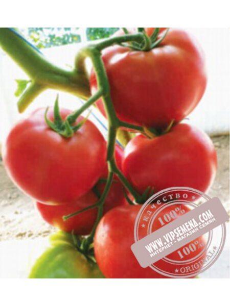 Malinka Star F1 (Малинка Стар f1)  семена томата индет. розового Cora Seed, оригинальная упаковка (250 семян)