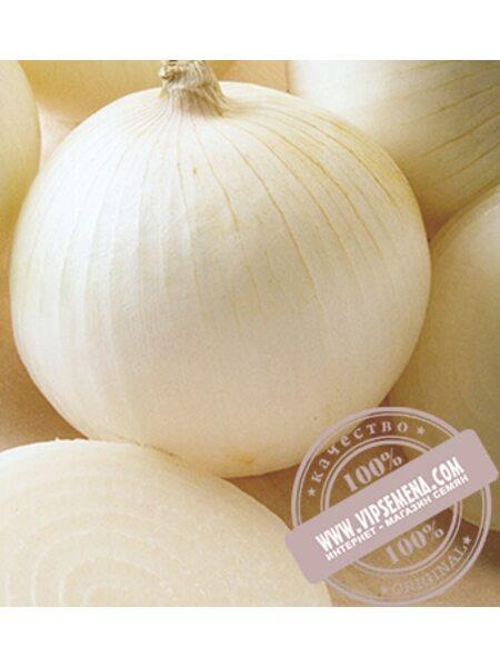 Сьерра Бланка F1 (Sierra Blanca) семена лука репчатого Seminis, оригинальная упаковка (250000 семян)
