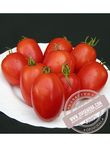 Велоз F1 (Veloz) семена томата Seminis, оригинальная упаковка (1000 семян)