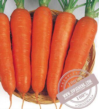 Виктория F1 (Victoria) семена моркови типа Шантане Seminis, оригинальная упаковка (0.5 кг.)
