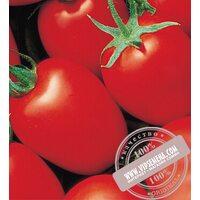 Яки F1 (Yaqui) семена томата Seminis, оригинальная упаковка (25000 семян)