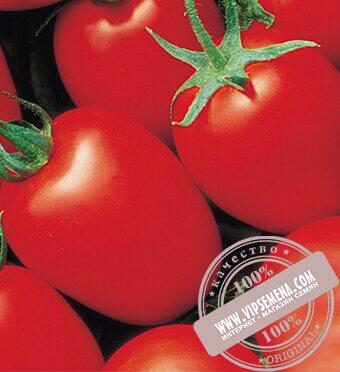 Яки F1 (Yaqui) семена томата Seminis, оригинальная упаковка (1000 семян)